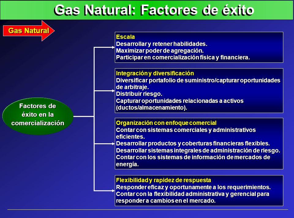 Gas Natural: Factores de éxito Escala Desarrollar y retener habilidades. Maximizar poder de agregación. Participar en comercialización física y financ