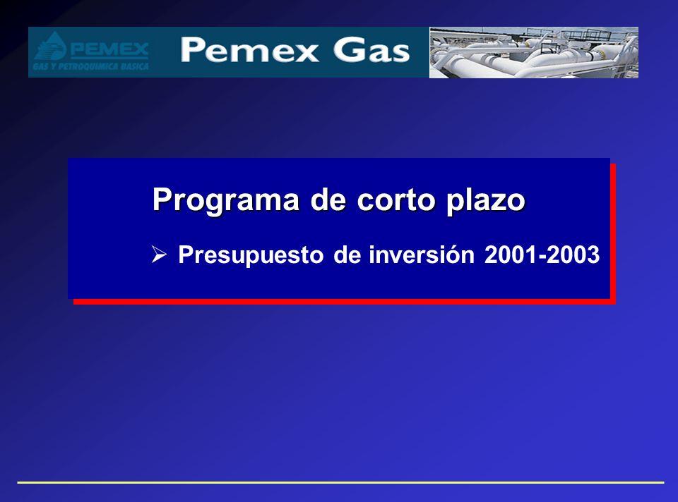 Programa de corto plazo Presupuesto de inversión 2001-2003