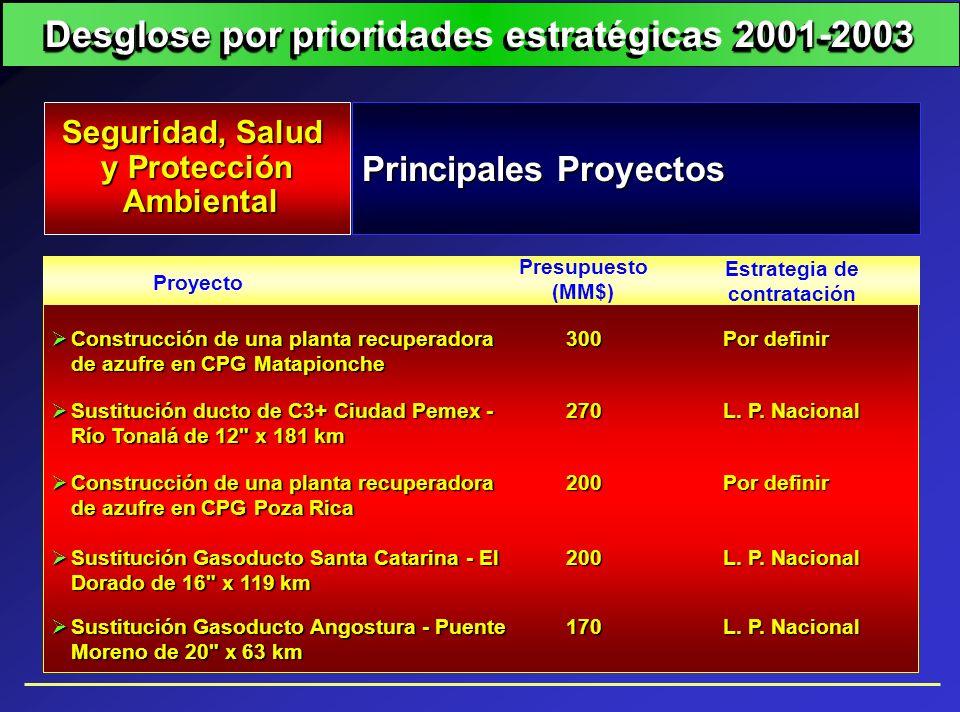Principales Proyectos Seguridad, Salud y Protección Ambiental Ambiental Proyecto Estrategia de contratación Presupuesto (MM$) Construcción de una plan