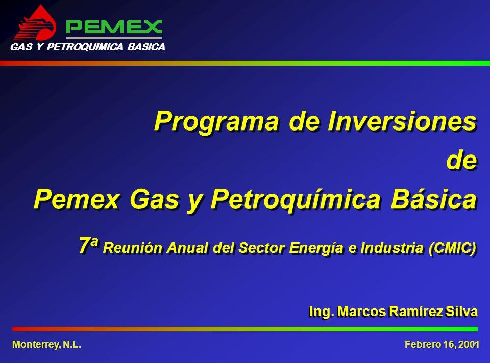 Ing. Marcos Ramírez Silva Programa de Inversiones de Pemex Gas y Petroquímica Básica 7 a Reunión Anual del Sector Energía e Industria (CMIC) Febrero 1