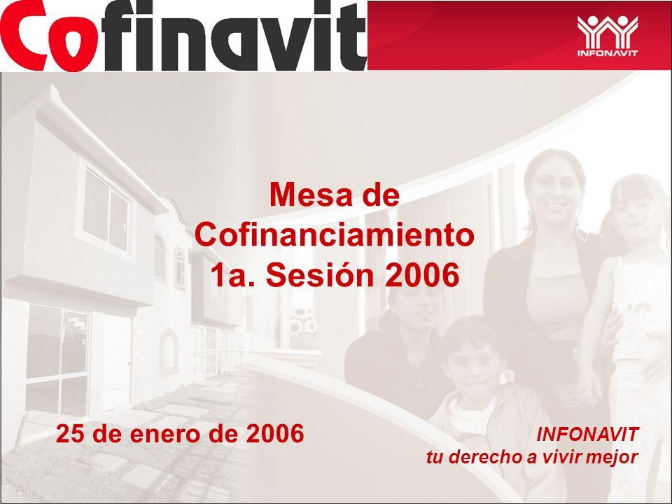 Mesa de Cofinanciamiento 1a. Sesión 2006 INFONAVIT tu derecho a vivir mejor 25 de enero de 2006
