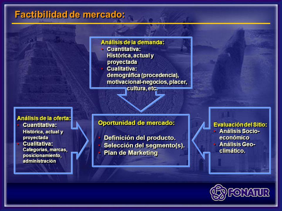 Oportunidad de mercado: Definición del producto. Selección del segmento(s).