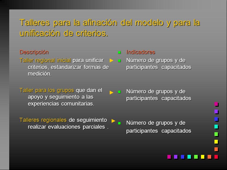 Talleres para la afinación del modelo y para la unificación de criterios.