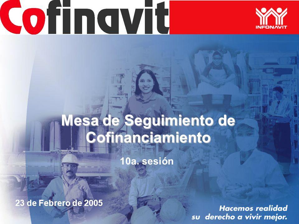 Mesa de Seguimiento de Cofinanciamiento 10a. sesión 23 de Febrero de 2005