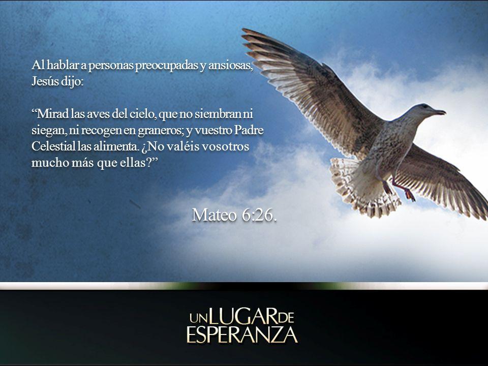 Al hablar a personas preocupadas y ansiosas, Jesús dijo: Mirad las aves del cielo, que no siembran ni siegan, ni recogen en graneros; y vuestro Padre