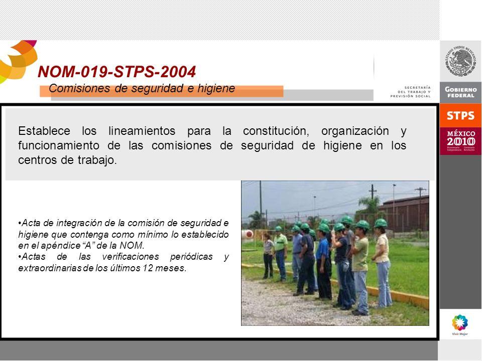 NOM-019-STPS-2004 Comisiones de seguridad e higiene Establece los lineamientos para la constitución, organización y funcionamiento de las comisiones d