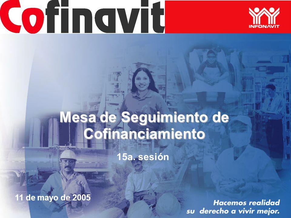 Mesa de Seguimiento de Cofinanciamiento 15a. sesión 11 de mayo de 2005