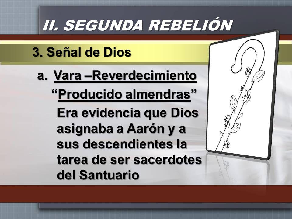 II. SEGUNDA REBELIÓN a.Vara –Reverdecimiento Producido almendrasProducido almendras Era evidencia que Dios asignaba a Aarón y a sus descendientes la t