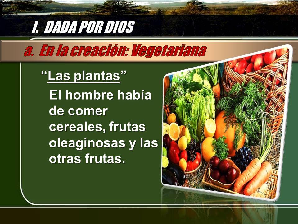 I. DADA POR DIOS Las plantas Las plantas El hombre había de comer cereales, frutas oleaginosas y las otras frutas.