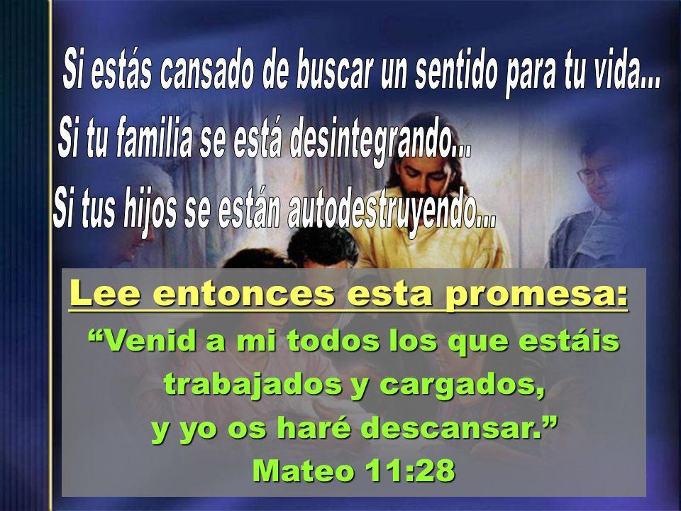 Lee entonces esta promesa: Venid a mi todos los que estáis trabajados y cargados, y yo os haré descansar. Mateo 11:28