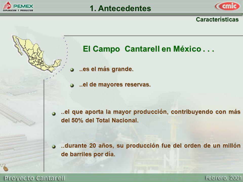 El Campo Cantarell en México.....es el más grande...el de mayores reservas...el que aporta la mayor producción, contribuyendo con más del 50% del Tota