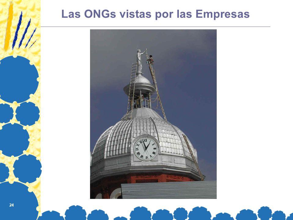 24 Las ONGs vistas por las Empresas