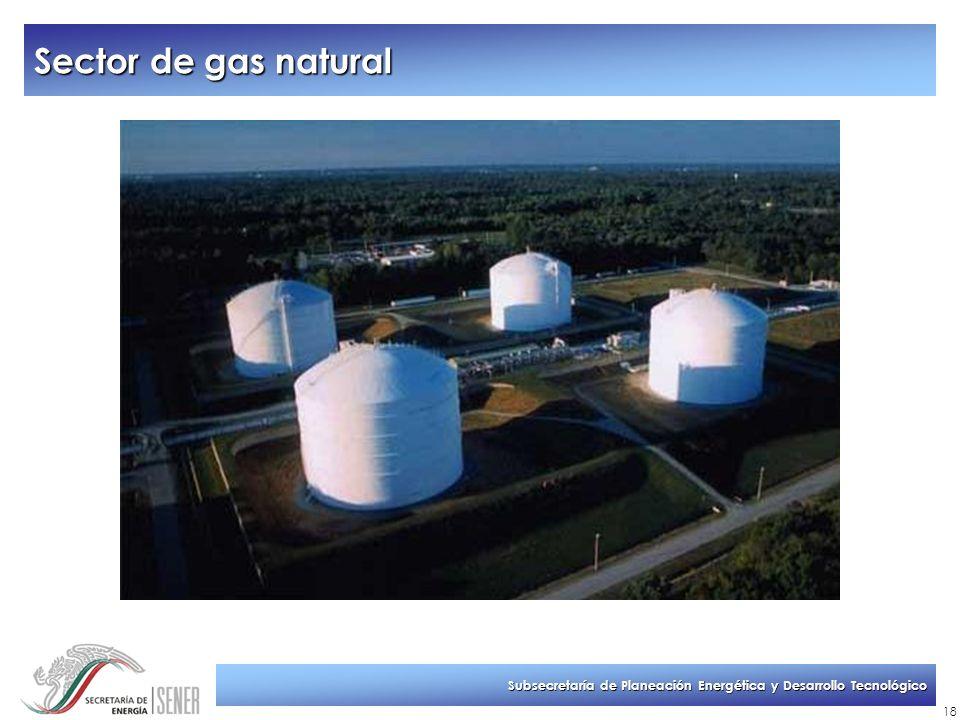 Subsecretaría de Planeación Energética y Desarrollo Tecnológico 18 Sector de gas natural