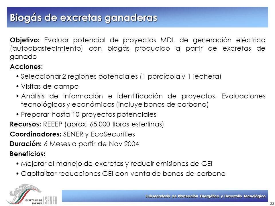 Subsecretaría de Planeación Energética y Desarrollo Tecnológico 33 Biogás de excretas ganaderas Objetivo: Evaluar potencial de proyectos MDL de genera