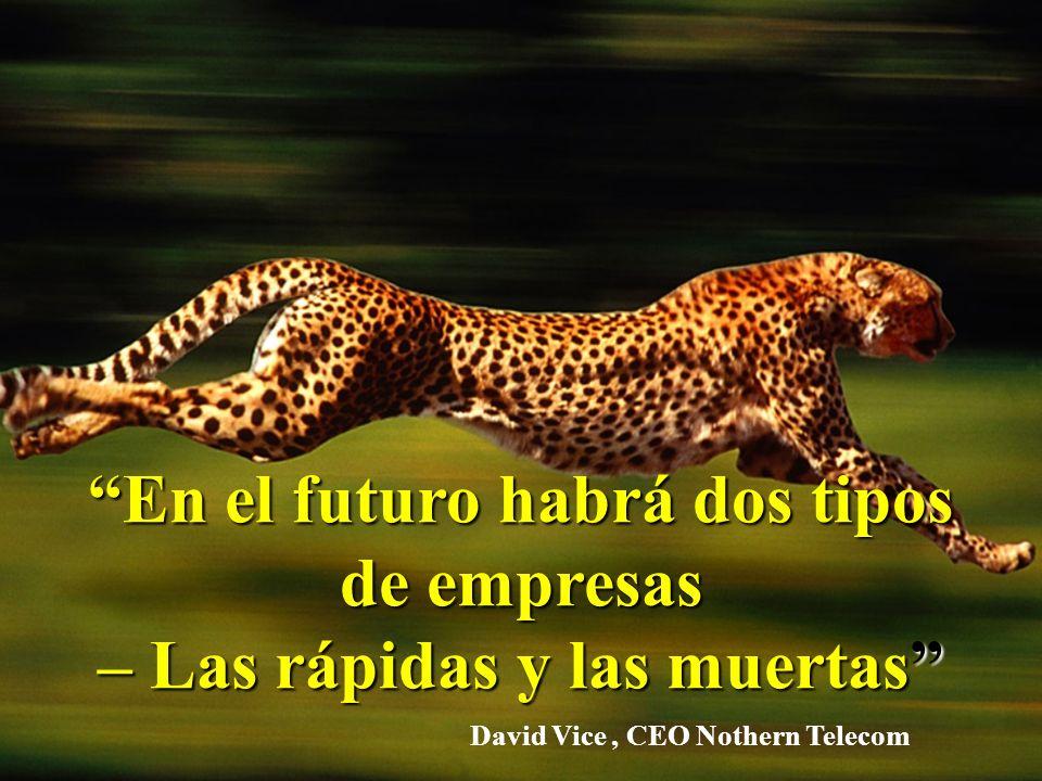 En el futuro habrá dos tipos de empresas – Las rápidas y las muertas David Vice, CEO Nothern Telecom