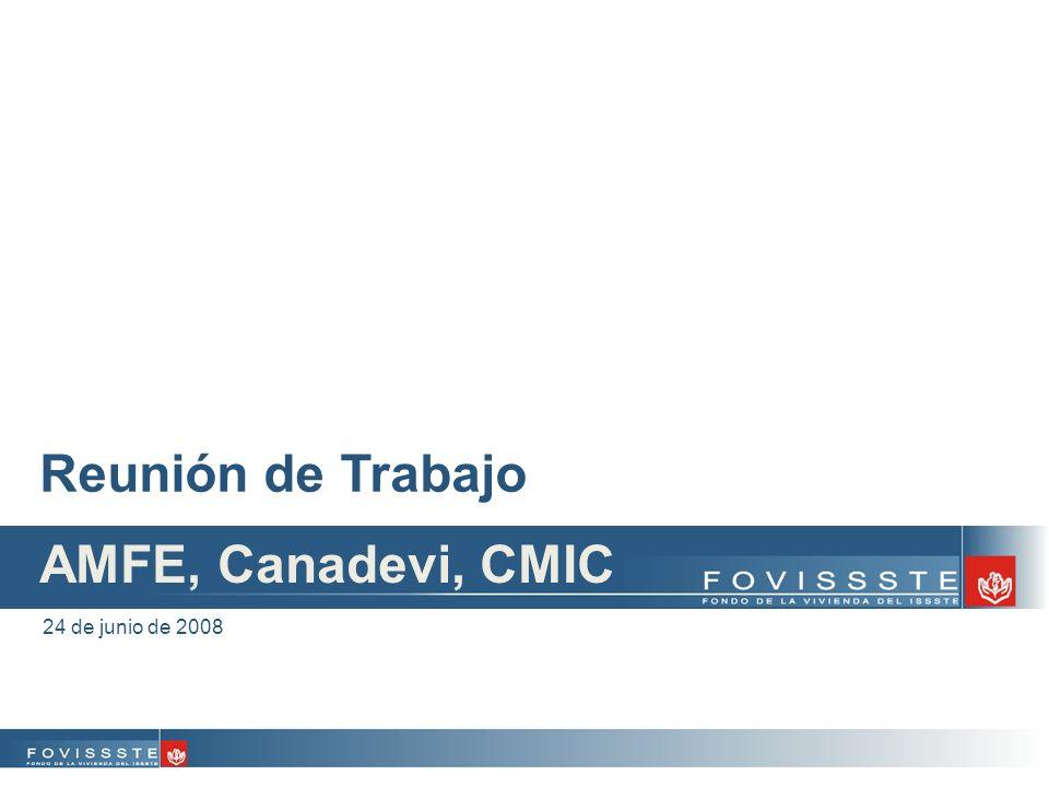 Reunión de Trabajo 24 de junio de 2008 AMFE, Canadevi, CMIC