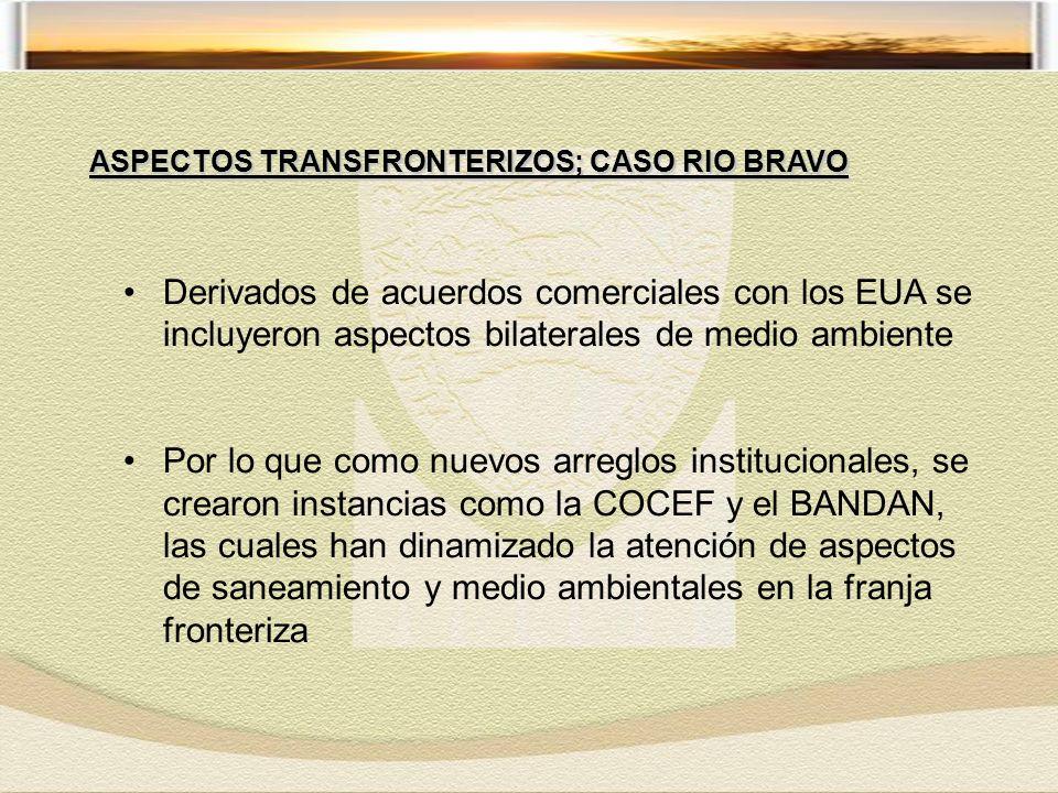 Derivados de acuerdos comerciales con los EUA se incluyeron aspectos bilaterales de medio ambiente Por lo que como nuevos arreglos institucionales, se crearon instancias como la COCEF y el BANDAN, las cuales han dinamizado la atención de aspectos de saneamiento y medio ambientales en la franja fronteriza ASPECTOS TRANSFRONTERIZOS; CASO RIO BRAVO
