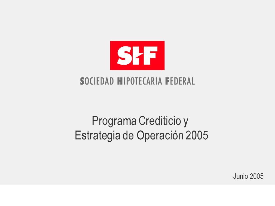Programa Crediticio y Estrategia de Operación 2005 Junio 2005