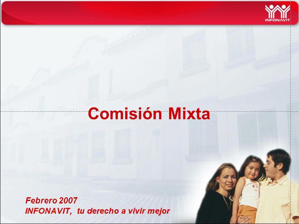 Comisión Mixta Febrero 2007