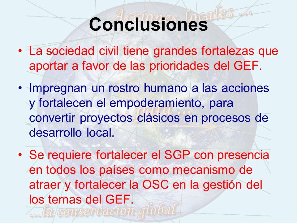 Conclusiones La sociedad civil tiene grandes fortalezas que aportar a favor de las prioridades del GEF.