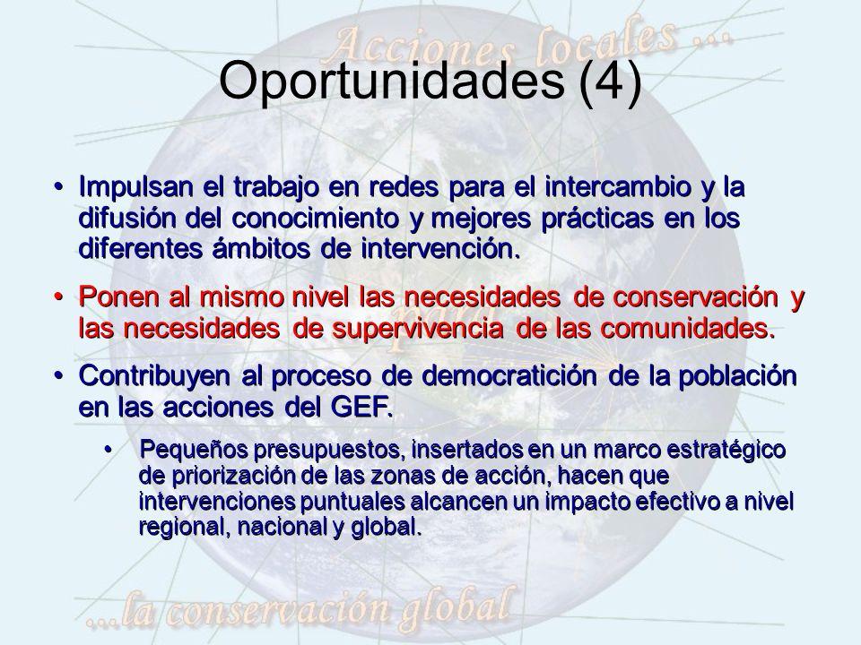 Oportunidades (4) Impulsan el trabajo en redes para el intercambio y la difusión del conocimiento y mejores prácticas en los diferentes ámbitos de intervención.