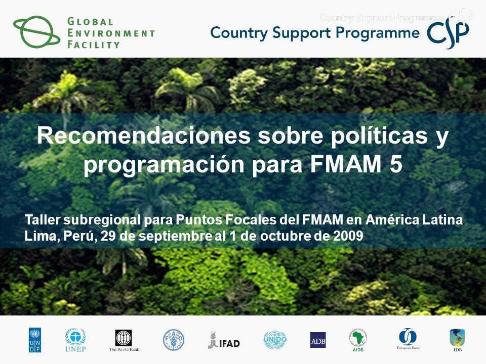 Taller subregional para Puntos Focales del FMAM en América Latina Lima, Perú, 29 de septiembre al 1 de octubre de 2009 Recomendaciones sobre políticas y programación para FMAM 5