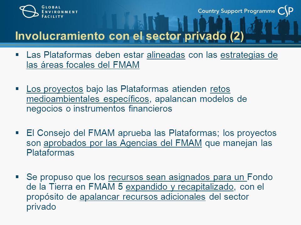 Involucramiento con el sector privado (2) Las Plataformas deben estar alineadas con las estrategias de las áreas focales del FMAM Los proyectos bajo las Plataformas atienden retos medioambientales específicos, apalancan modelos de negocios o instrumentos financieros El Consejo del FMAM aprueba las Plataformas; los proyectos son aprobados por las Agencias del FMAM que manejan las Plataformas Se propuso que los recursos sean asignados para un Fondo de la Tierra en FMAM 5 expandido y recapitalizado, con el propósito de apalancar recursos adicionales del sector privado