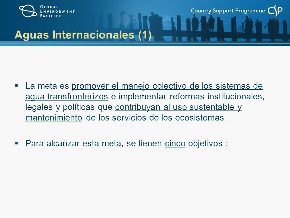 Aguas Internacionales (2) Catalizar la cooperación multi-estatal para balancear los usos de agua conflictivos en la superficie transfronteriza y las cuencas de agua subterránea al tiempo que se consideren la variabilidad y el cambio climáticos Catalizar la cooperación multi-estatal para reconstruir la pesca marina y reducir la contaminación de las costas y los Ecosistemas Marinos Mayores (LMEs) al tiempo que se consideren la variabilidad y el cambio climáticos Apoyar la construcción de capacidades, el aprendizaje derivado de la ejecución de otros proyectos en AI y las necesidades de investigación para el manejo conjunto y ecosistémico de sistemas de agua transfronterizos Promover el manejo efectivo de áreas marinas fuera de la jurisdicción nacional dirigido a prevenir el agotamiento de la pesca - con BD Llevar a cabo proyectos piloto de pequeña escala de reducción de la contaminación proveniente de Sustancias Tóxicas Persistentes, especialmente las que provocan desajustes endocrinológicos – con POPs