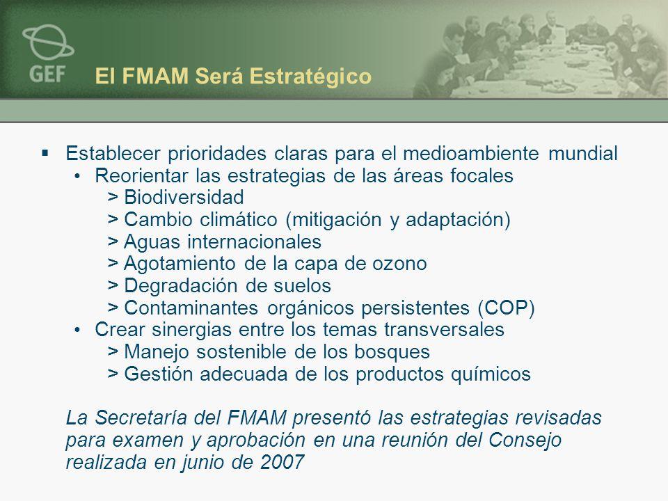 El FMAM Será Estratégico Establecer prioridades claras para el medioambiente mundial Reorientar las estrategias de las áreas focales >Biodiversidad >Cambio climático (mitigación y adaptación) >Aguas internacionales >Agotamiento de la capa de ozono >Degradación de suelos >Contaminantes orgánicos persistentes (COP) Crear sinergias entre los temas transversales >Manejo sostenible de los bosques >Gestión adecuada de los productos químicos La Secretaría del FMAM presentó las estrategias revisadas para examen y aprobación en una reunión del Consejo realizada en junio de 2007