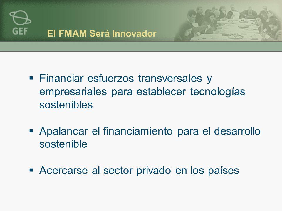 El FMAM Será Innovador Financiar esfuerzos transversales y empresariales para establecer tecnologías sostenibles Apalancar el financiamiento para el desarrollo sostenible Acercarse al sector privado en los países