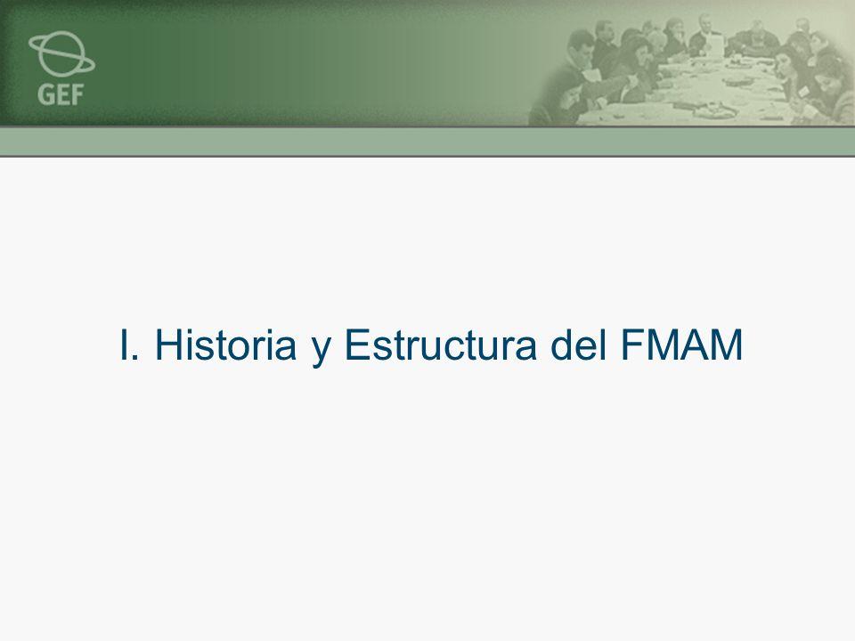 I. Historia y Estructura del FMAM