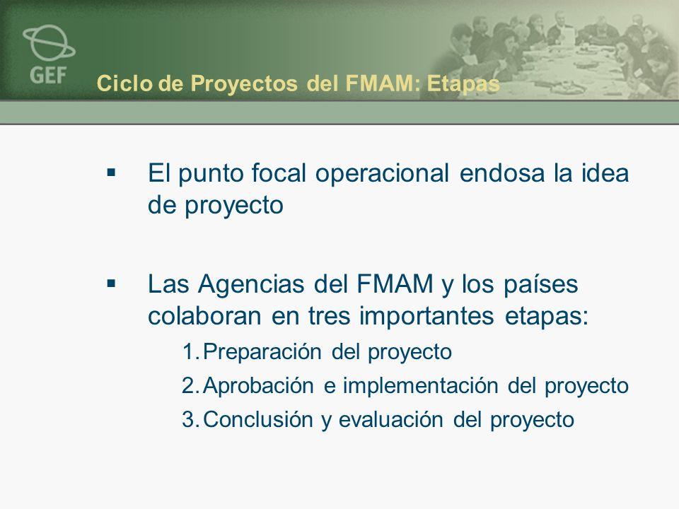 Ciclo de Proyectos del FMAM: Etapas El punto focal operacional endosa la idea de proyecto Las Agencias del FMAM y los países colaboran en tres importantes etapas: 1.Preparación del proyecto 2.Aprobación e implementación del proyecto 3.Conclusión y evaluación del proyecto
