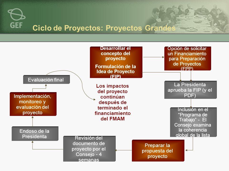 Desarrollar el concepto del proyecto Formulación de la Idea de Proyecto (FIP) Preparar la propuesta del proyecto Opción de solicitar un Financiamiento para Preparación de Proyectos (FPP) La Presidenta aprueba la FIP (y el PDF) Inclusión en el Programa de Trabajo - El Consejo examina la coherencia global de la lista Endoso de la Presidenta Revisión del documento de proyecto por el Consejo - 4 semanas Implementación, monitoreo y evaluación del proyecto Evaluación final Los impactos del proyecto continúan después de terminado el financiamiento del FMAM Ciclo de Proyectos: Proyectos Grandes