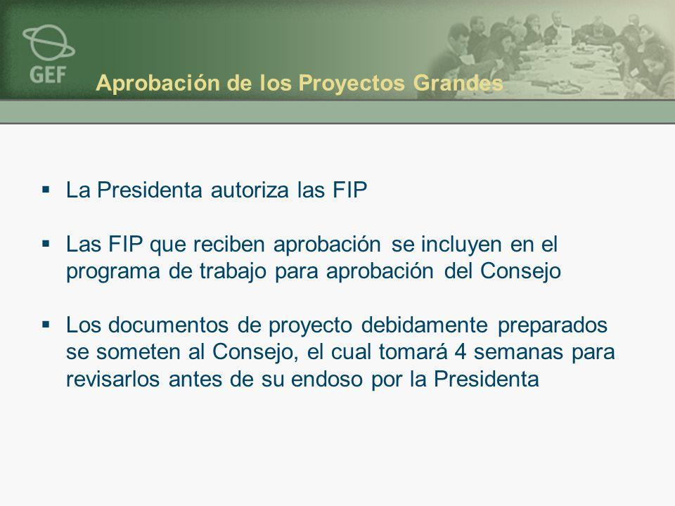 Aprobación de los Proyectos Grandes La Presidenta autoriza las FIP Las FIP que reciben aprobación se incluyen en el programa de trabajo para aprobación del Consejo Los documentos de proyecto debidamente preparados se someten al Consejo, el cual tomará 4 semanas para revisarlos antes de su endoso por la Presidenta