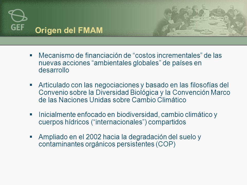 Origen del FMAM Mecanismo de financiación de costos incrementales de las nuevas acciones ambientales globales de países en desarrollo Articulado con l