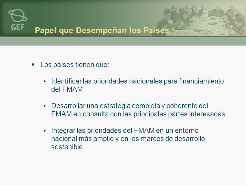 Papel que Desempeñan los Países Los países tienen que: Identificar las prioridades nacionales para financiamiento del FMAM Desarrollar una estrategia