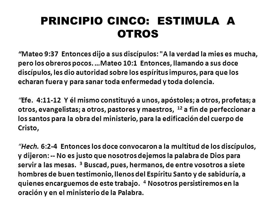PRINCIPIO CINCO: ESTIMULA A OTROS Mateo 9:37 Entonces dijo a sus discípulos: