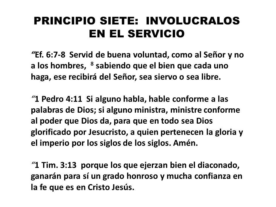 PRINCIPIO SIETE: INVOLUCRALOS EN EL SERVICIO Ef. 6:7-8 Servid de buena voluntad, como al Señor y no a los hombres, 8 sabiendo que el bien que cada uno