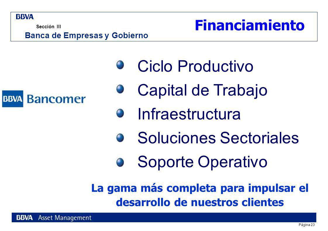 Página 22 Sección III Banca de Empresas y Gobierno En BEyG de BBVA Bancomer estamos enfocados a solucionar las necesidades de nuestros Clientes bajo d