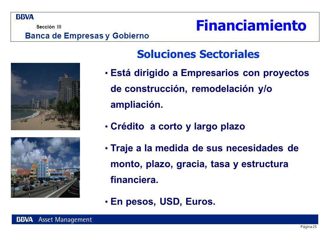 Página 24 Sección III Banca de Empresas y Gobierno Inmobiliario Comercial Vivienda Turística o Recreativa Second home Inmobiliario Comercial Alojamien