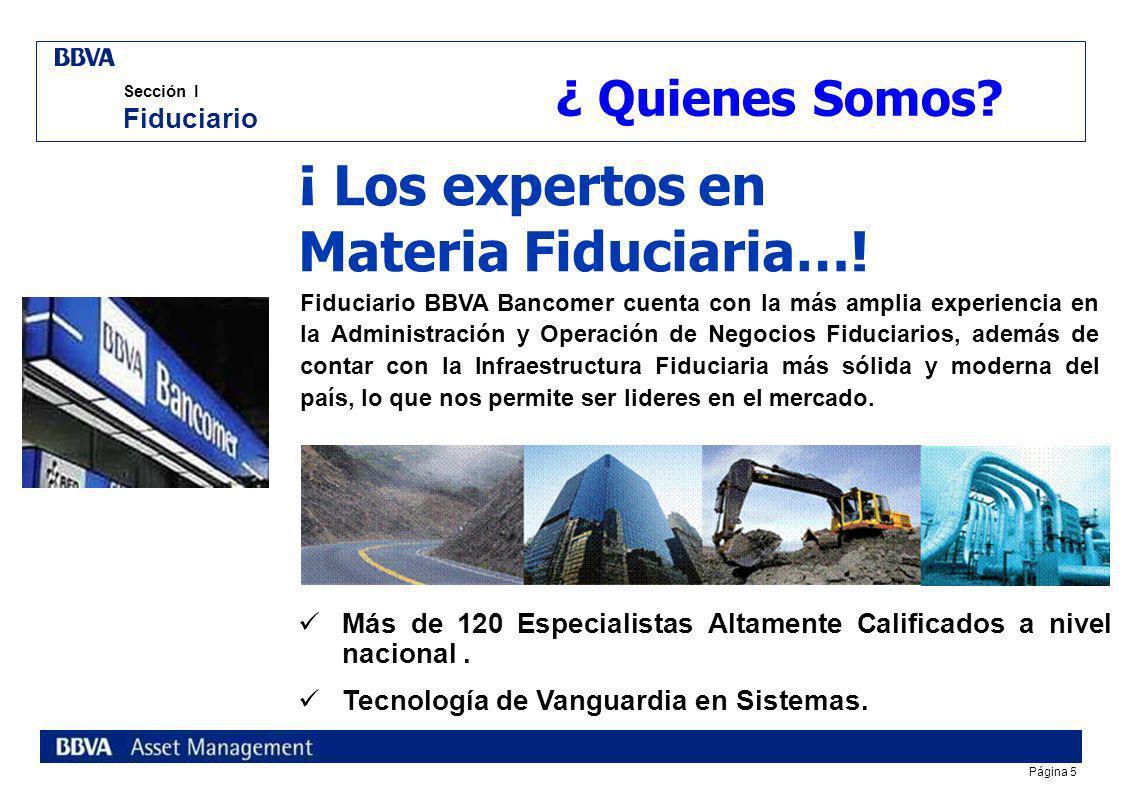 Página 5 Sección I Fiduciario ¡ Los expertos en Materia Fiduciaria….