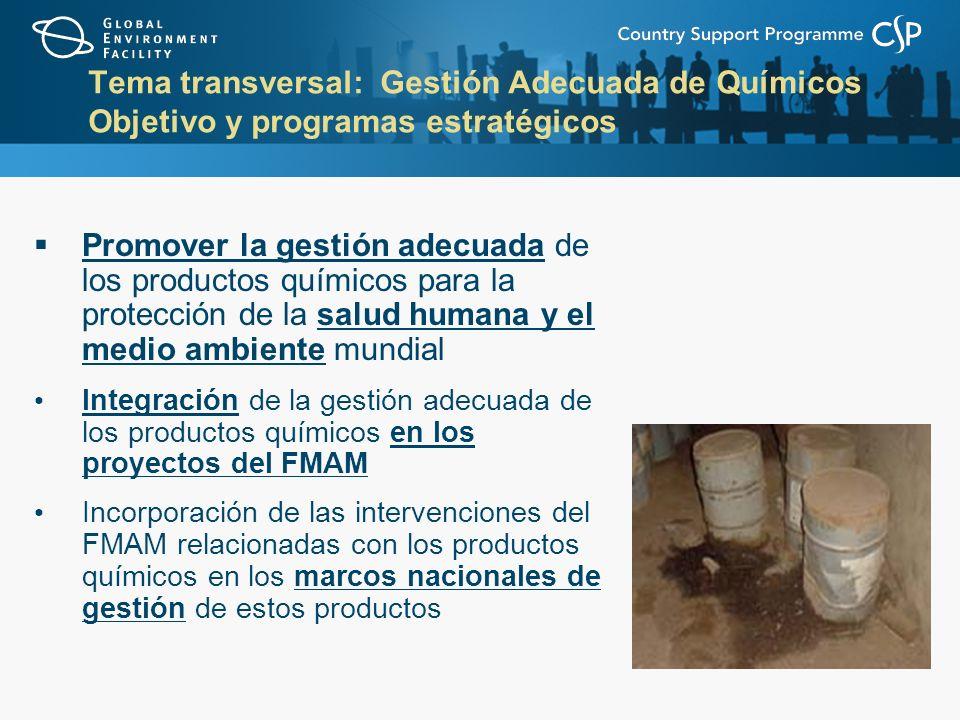 Tema transversal: Gestión Adecuada de Químicos Objetivo y programas estratégicos Promover la gestión adecuada de los productos químicos para la protección de la salud humana y el medio ambiente mundial Integración de la gestión adecuada de los productos químicos en los proyectos del FMAM Incorporación de las intervenciones del FMAM relacionadas con los productos químicos en los marcos nacionales de gestión de estos productos
