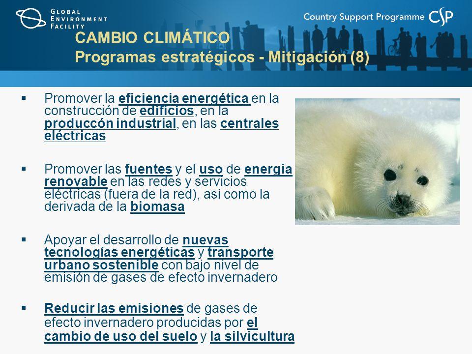 CAMBIO CLIMÁTICO Programas estratégicos - Mitigación (8) Promover la eficiencia energética en la construcción de edificios, en la produccón industrial, en las centrales eléctricas Promover las fuentes y el uso de energia renovable en las redes y servicios eléctricas (fuera de la red), asi como la derivada de la biomasa Apoyar el desarrollo de nuevas tecnologías energéticas y transporte urbano sostenible con bajo nivel de emisión de gases de efecto invernadero Reducir las emisiones de gases de efecto invernadero producidas por el cambio de uso del suelo y la silvicultura