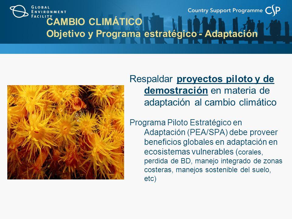 CAMBIO CLIMÁTICO Objetivo y Programa estratégico - Adaptación Respaldar proyectos piloto y de demostración en materia de adaptación al cambio climático Programa Piloto Estratégico en Adaptación (PEA/SPA) debe proveer beneficios globales en adaptación en ecosistemas vulnerables ( corales, perdida de BD, manejo integrado de zonas costeras, manejos sostenible del suelo, etc)