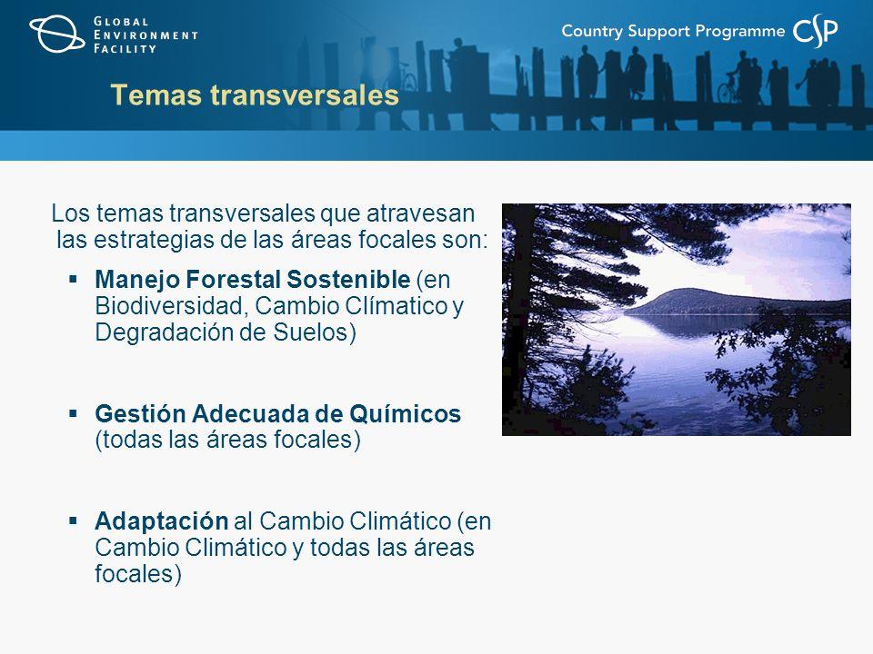 Temas transversales Los temas transversales que atravesan las estrategias de las áreas focales son: Manejo Forestal Sostenible (en Biodiversidad, Cambio Clímatico y Degradación de Suelos) Gestión Adecuada de Químicos (todas las áreas focales) Adaptación al Cambio Climático (en Cambio Climático y todas las áreas focales)