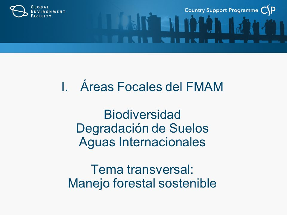I.Áreas Focales del FMAM Biodiversidad Degradación de Suelos Aguas Internacionales Tema transversal: Manejo forestal sostenible