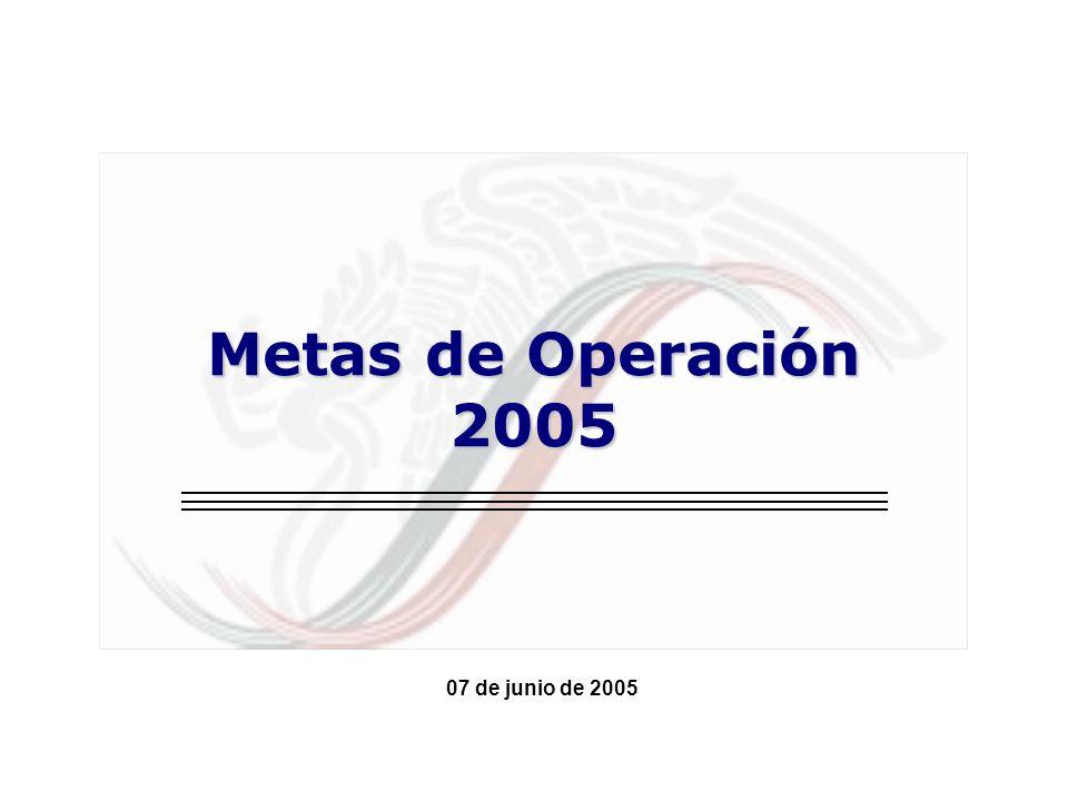07 de junio de 2005 Metas de Operación 2005