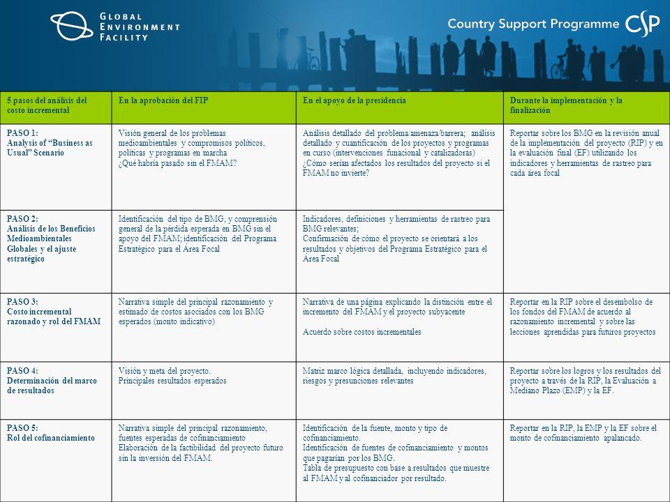 5 pasos del análisis del costo incremental En la aprobación del FIPEn el apoyo de la presidenciaDurante la implementación y la finalización PASO 1: Analysis of Business as Usual Scenario Visión general de los problemas medioambientales y compromisos políticos, políticas y programas en marcha ¿Qué habría pasado sin el FMAM.
