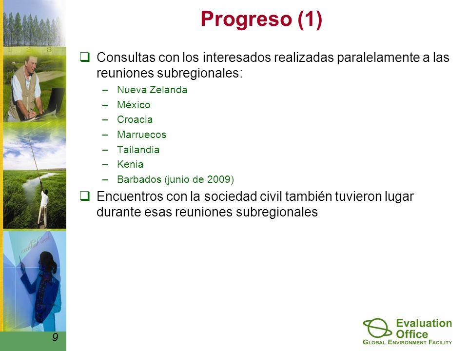 Progreso (1) Consultas con los interesados realizadas paralelamente a las reuniones subregionales: –Nueva Zelanda –México –Croacia –Marruecos –Tailandia –Kenia –Barbados (junio de 2009) Encuentros con la sociedad civil también tuvieron lugar durante esas reuniones subregionales 9