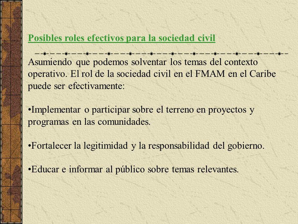 Posibles roles efectivos para la sociedad civil Asumiendo que podemos solventar los temas del contexto operativo.
